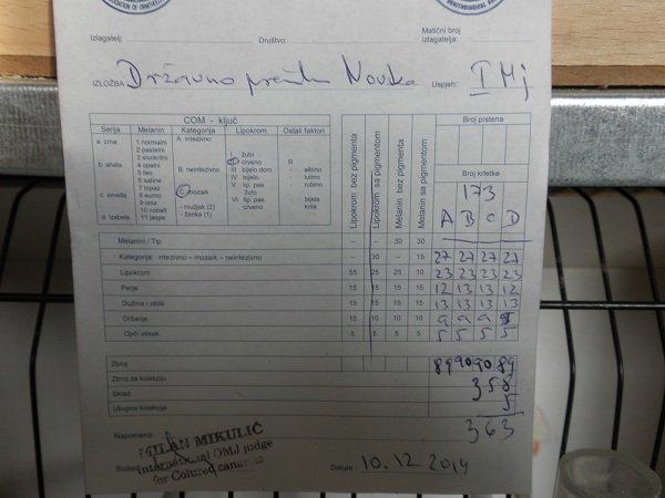 Moje pobjedničke ocijenske liste