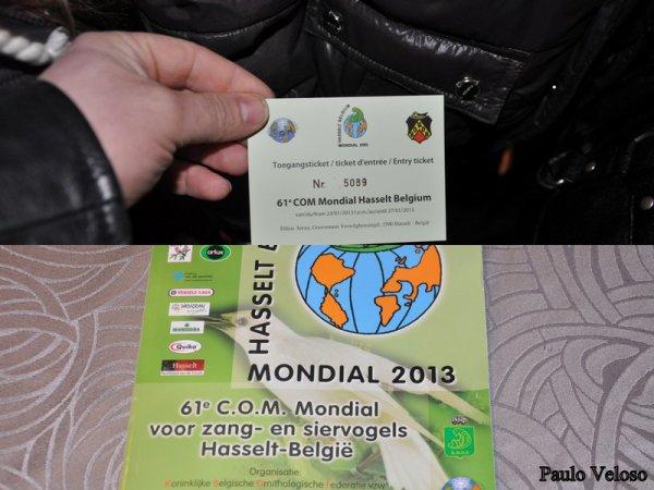 Visite du Mondial de Hasselt 2013 le 26/01/2013