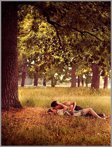 Citation : Amour -- 007