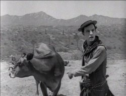 Ma Vache et moi