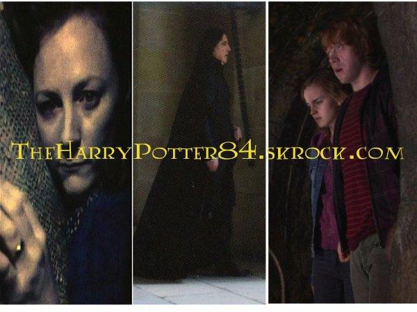 Photos Harry Potter et les relique de mort part 2
