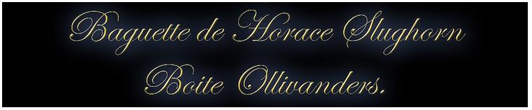 Présentation - Baguette Horace Slughorn boite OLLIVANDER