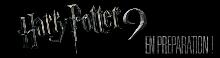 Le neuvième Harry Potter (version mini), préparation en secret