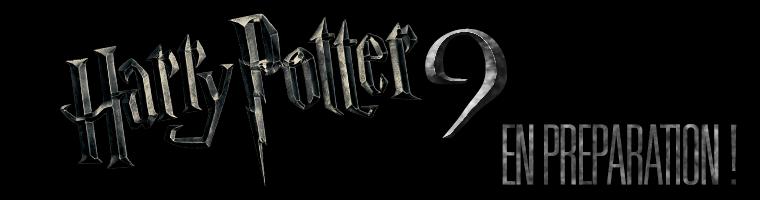 Le neuvième Harry Potter (version mini), préparation en secret