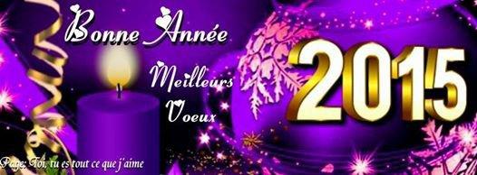 bonne année a tous et a toutes!!