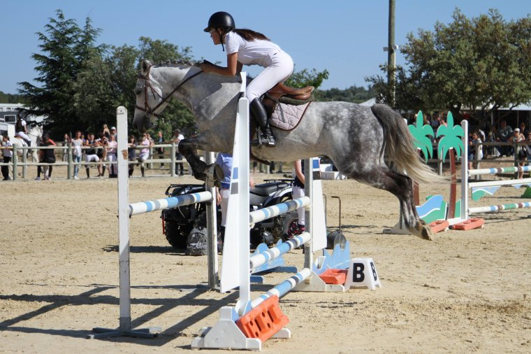A cheval !