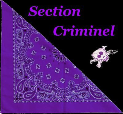 SECTION CRIMINEL