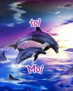 encore un dauphin