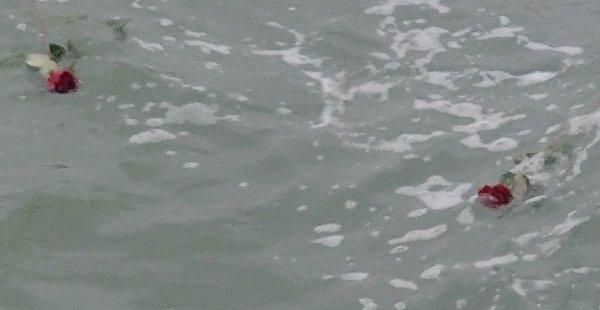 TOUSSAINT à la mer....