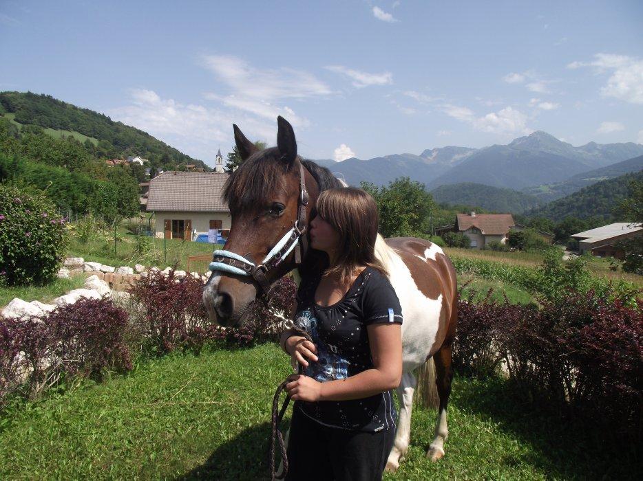 Les chevaux c'est la plus belle chose au monde