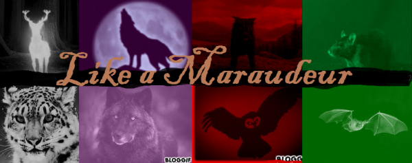 Fiction n°7 : Maraudeuses