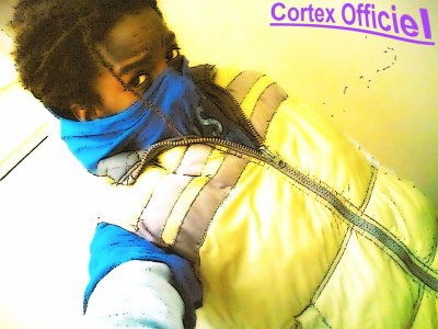 Cortex Officiel