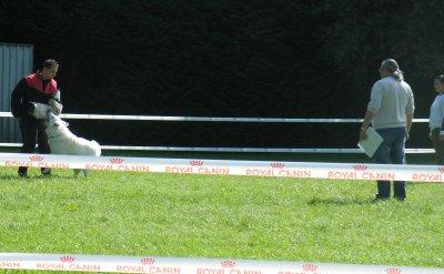Regionale d'élevage 2010