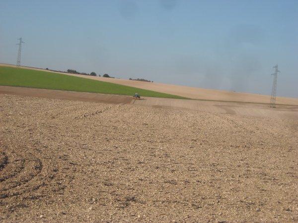Chantier de semis sur la route du retour.