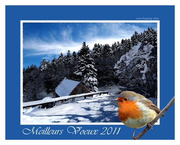 meilleurs voeux pour 2011.