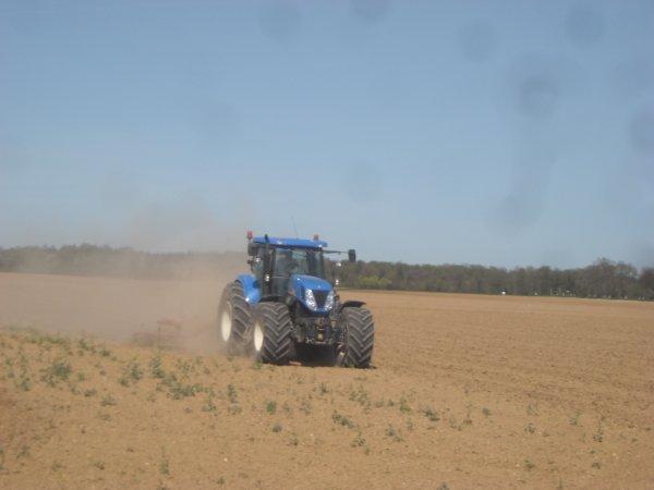 Préparation des terres à maïs +++.