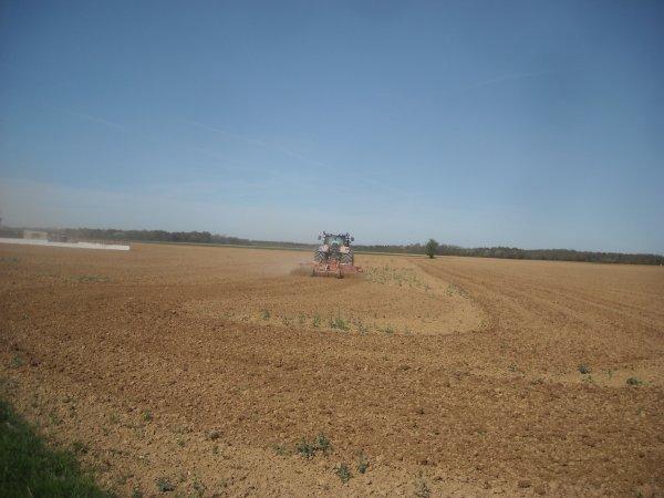 Préparation des terres à maïs Fin.