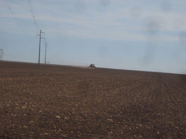 Chantier de semis de maïs.