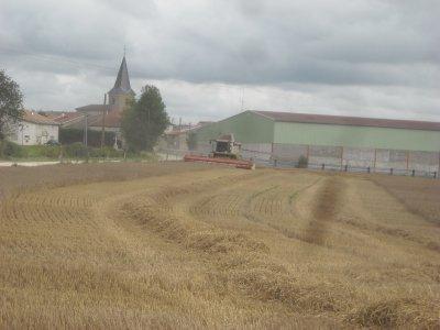 Chantier de blé à Dagonville suite.