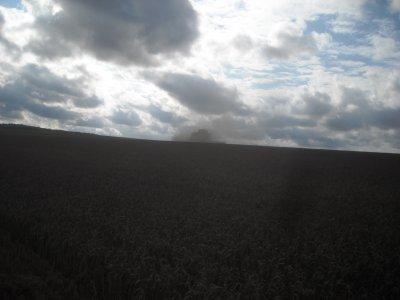 Re chantier de blé en grande largeur.