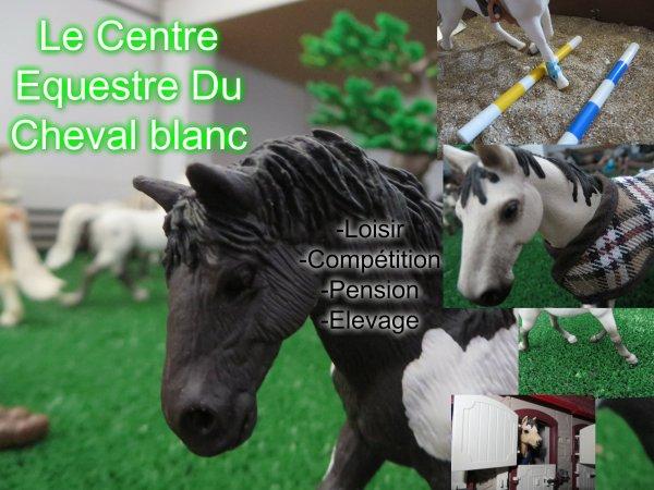 Le CE Du Cheval Blanc