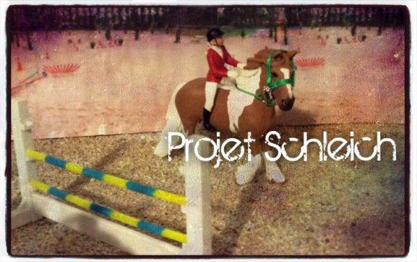 Mon Projet Schleich