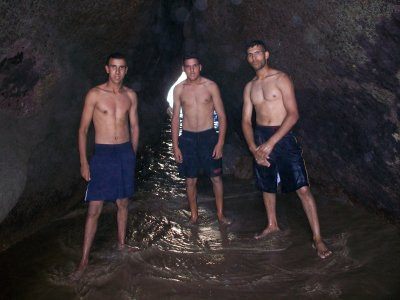 ASILA 2010