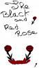 The-black-and-red-rose