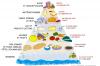 La pyramide d'équilibre alimentaire