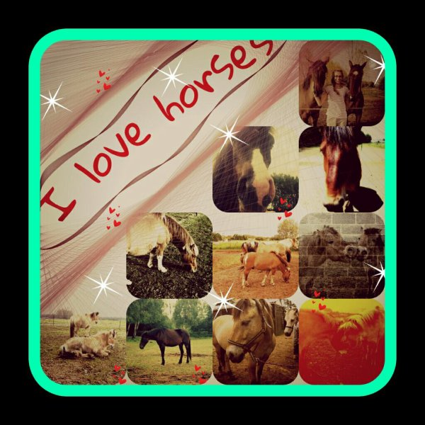 #Les chevaux#