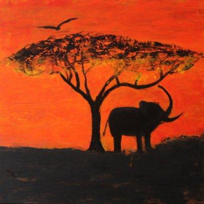Eléphant d afrique