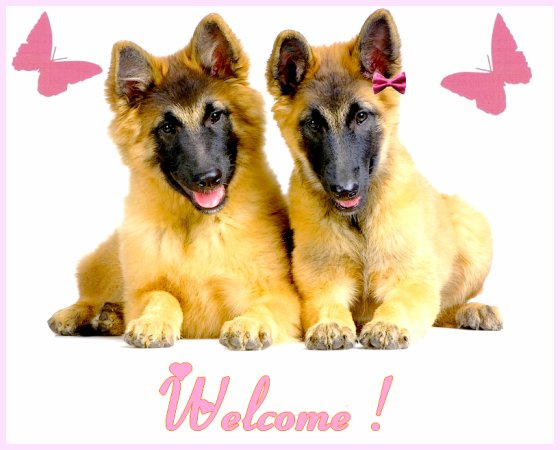 ♥ Welcome ♥