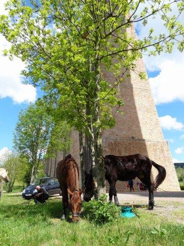 Vacances de Pâques dans le Brionnais / TREC du 15 mai à Berne-ouest