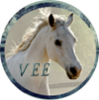 Vos-Envies-Equines