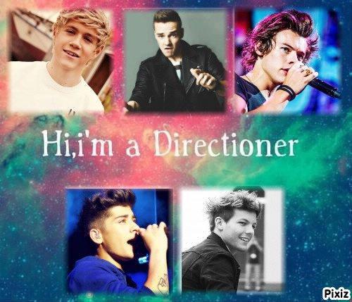 Hi , I'm Directioner !