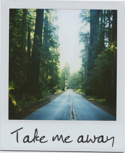 Take me away, boy.
