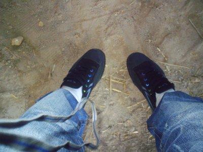 chaussure adri