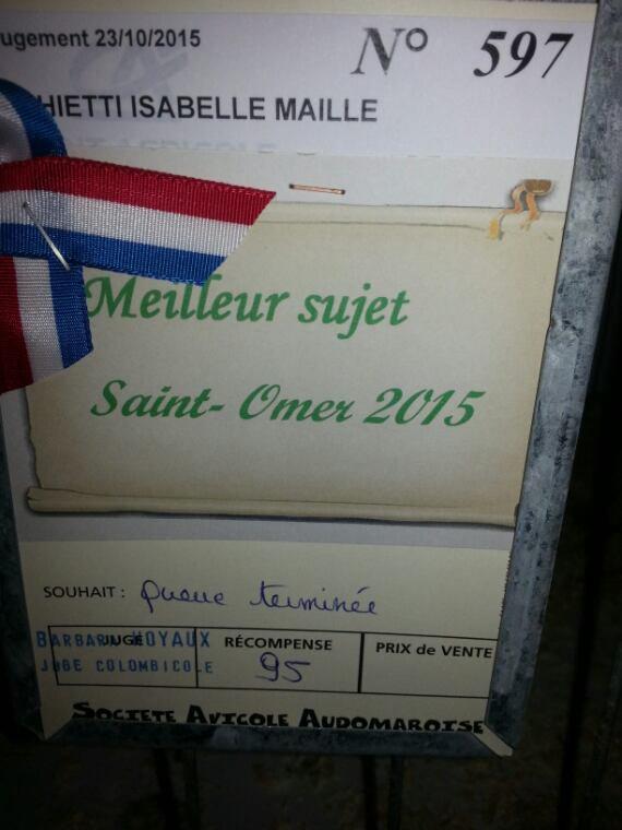 Expo Saint Omer 2015