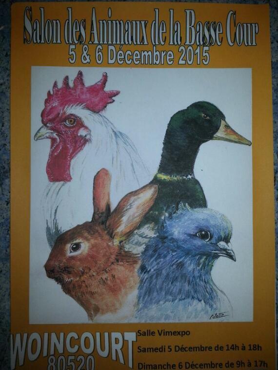 Exposition de Woincourt 2015
