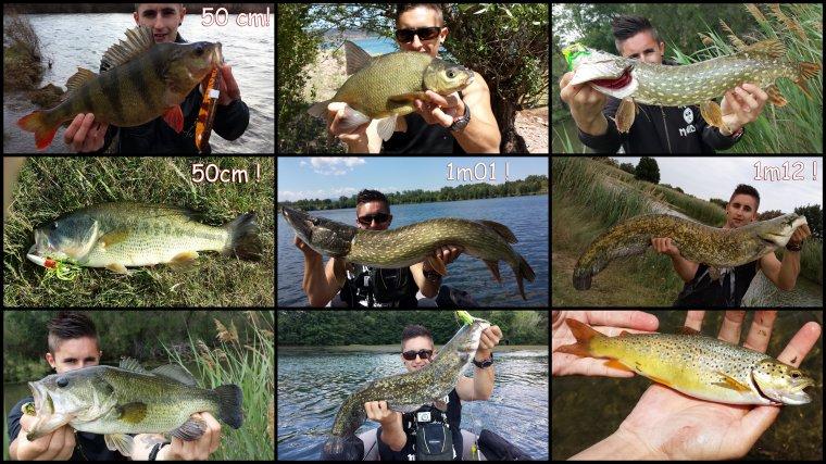 Quelques poissons de ce début d'année !