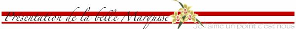 Article N°4 Présentation de Marquise