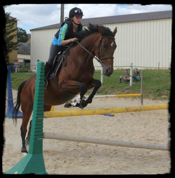 Le cheval c'est trop géniale.