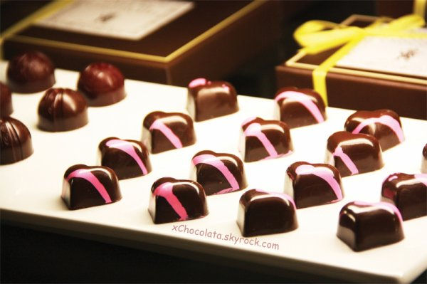 « Une vie sans chocolat est une vie à laquelle manque l'essentiel. »