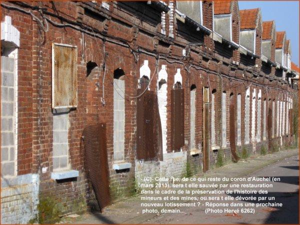 Des maisons dévastées, aux ouvertures murées, grillagées dans le coron d'Auchel