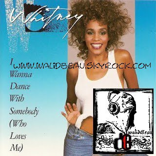 Calvin Harris Ft Whitney Houston / Iwanna Dance With SomeBody (Craig Vanity We Found Love Tribute Mashup) (2012)
