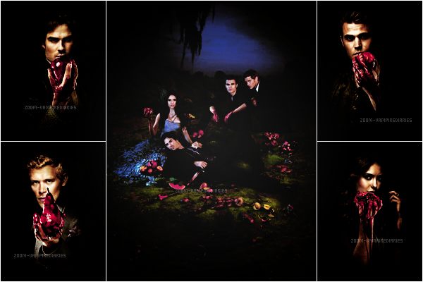 ZOOM-VAMPIREDIARIES.SKYROCK.COM || PHOTOS PROMOTIONELLES SAISON 3