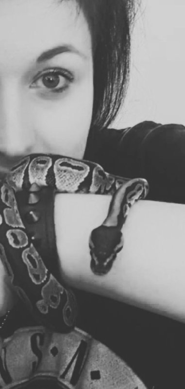 First Snake