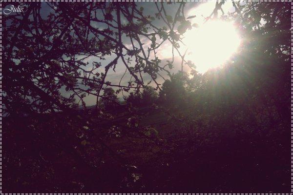 """"""" Les rêves sont comme les étoiles, tu ne peut pas les toucher, mais si tu les suit, elles te guideront vers ta destiné."""" ♥ Liam Payne"""