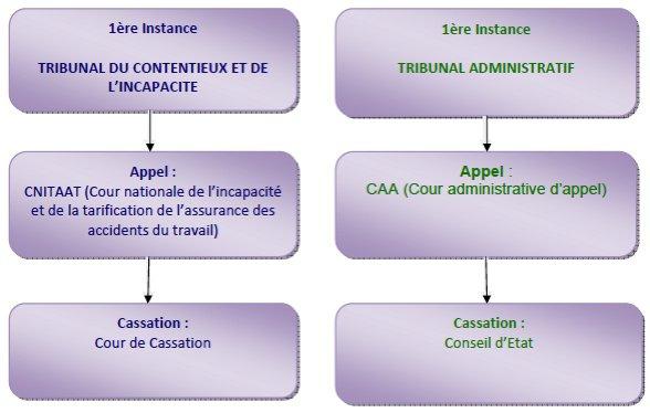 La fibromyalgie - Démarches administratives - Les recours contre la MDPH (2)