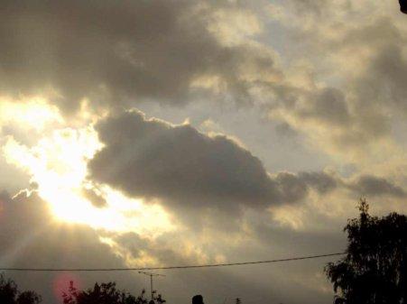 La fibromyalgie - au fil des jours (21/07/14)